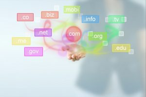 domain names biz org net info